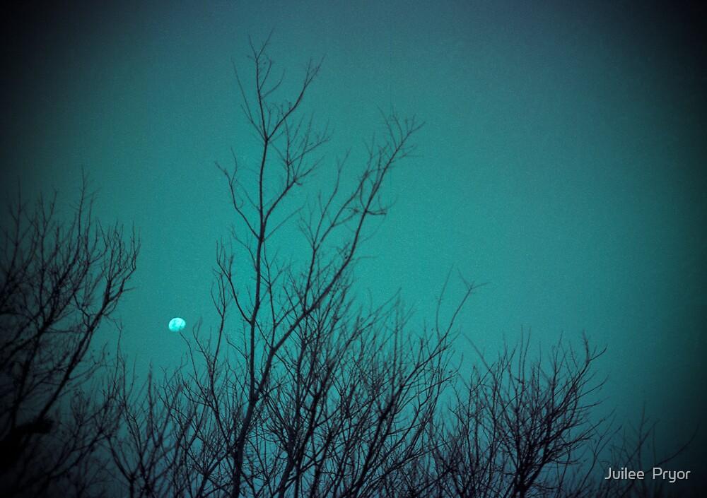 winter moon  by Juilee  Pryor