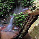 Secret Cascade by Lachlan Kent