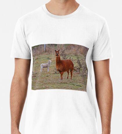 Alpaka und Freund Premium T-Shirt