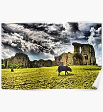 Denbigh Castle HDR Poster