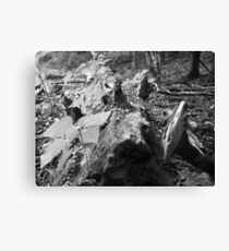 Oh the Great Outdoors Canvas Print