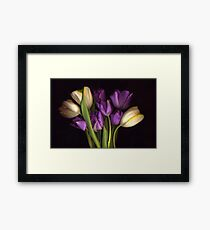 Purple and CreamTulip Bouquet Framed Print