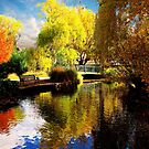Pond and Bridge by malcblue