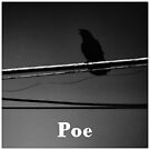 Poe by photo-lumiere
