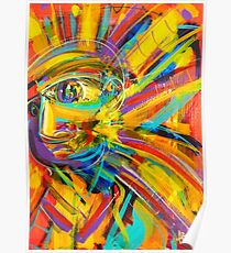 Gravity's Rainbow Poster