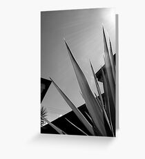 Leaves in Line Greeting Card