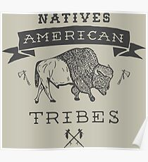 Natives American Tribes Poster