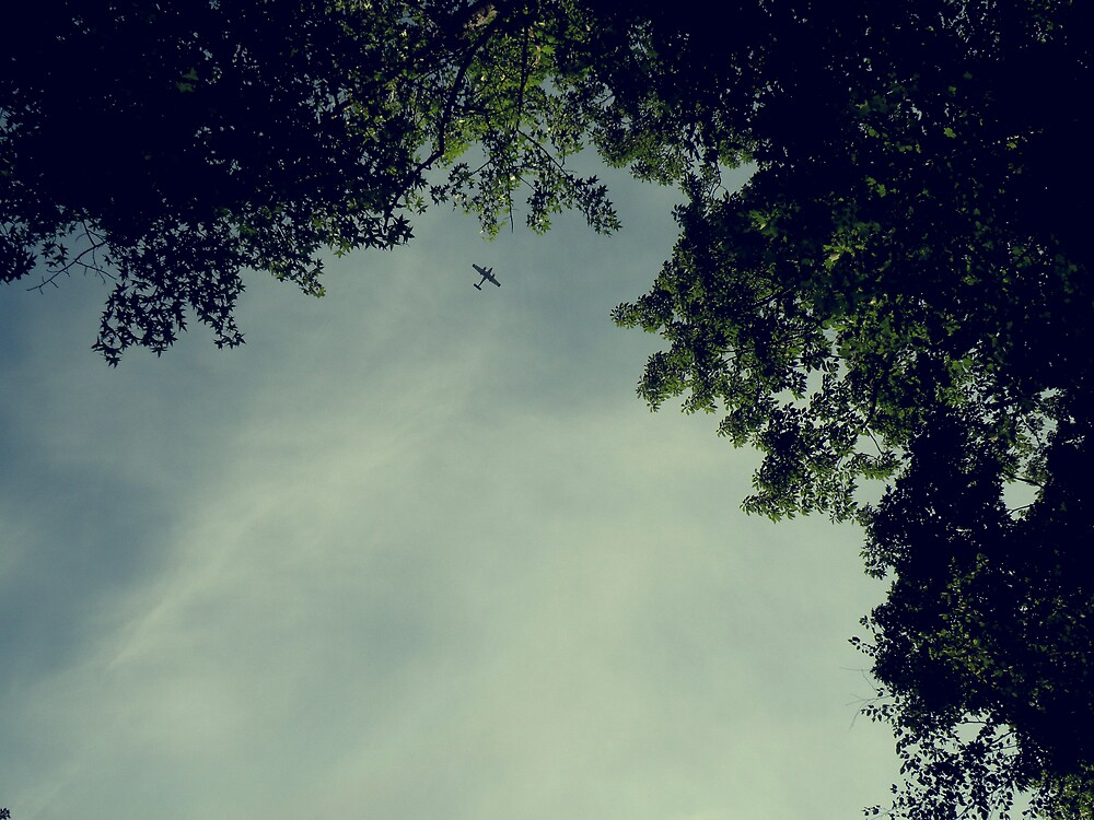 A bird of different sorts.  by RachelLea