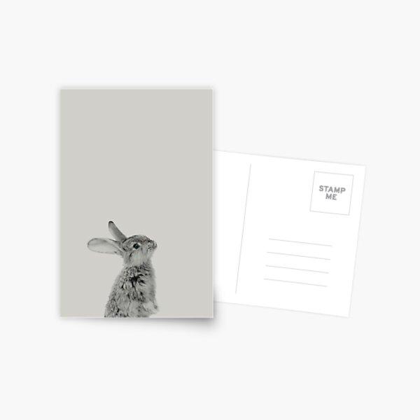 Rabbit 08 Postkarte