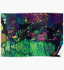 Pyroxene Crystals  Poster