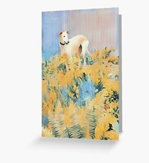 Golden Wire-haired Galga Greeting Card