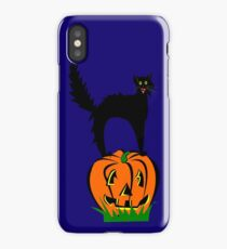 Funny Black Cat and Pumpkin iPhone Case/Skin