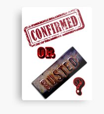 Confirmed or Busted Mythbusters Metal Print