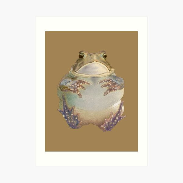 Flying Toad Art Print