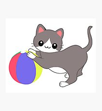Cat and Ball Photographic Print