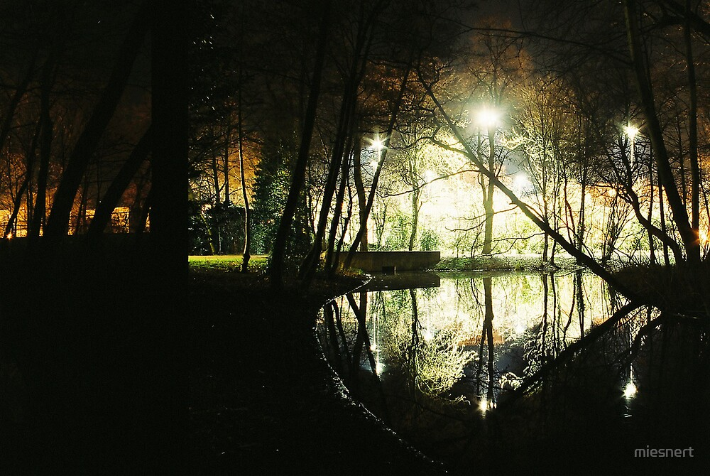 Reflections of a park by miesnert