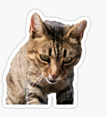Tabby Cat Looking Down From Above Vector Sticker