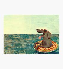Relaxed Doggo Photographic Print