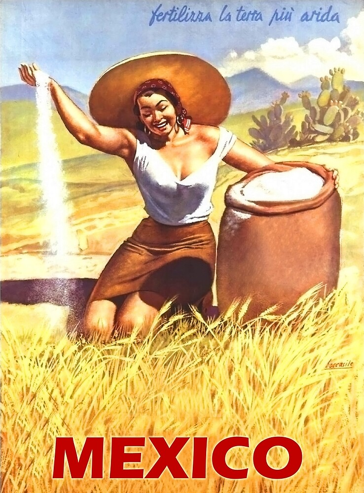 Mexico, Mexican woman, vintage travel poster by AmorOmniaVincit