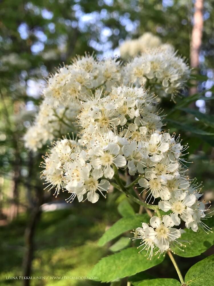 Rowan Flowers by Leenasart