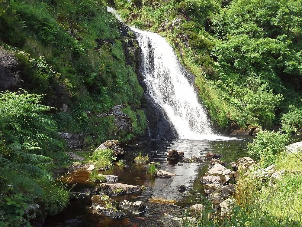 Assaranca Waterfall, Ireland  by Jill Vance