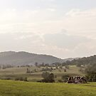 Blue Ridge Mountains by Southern  Departure