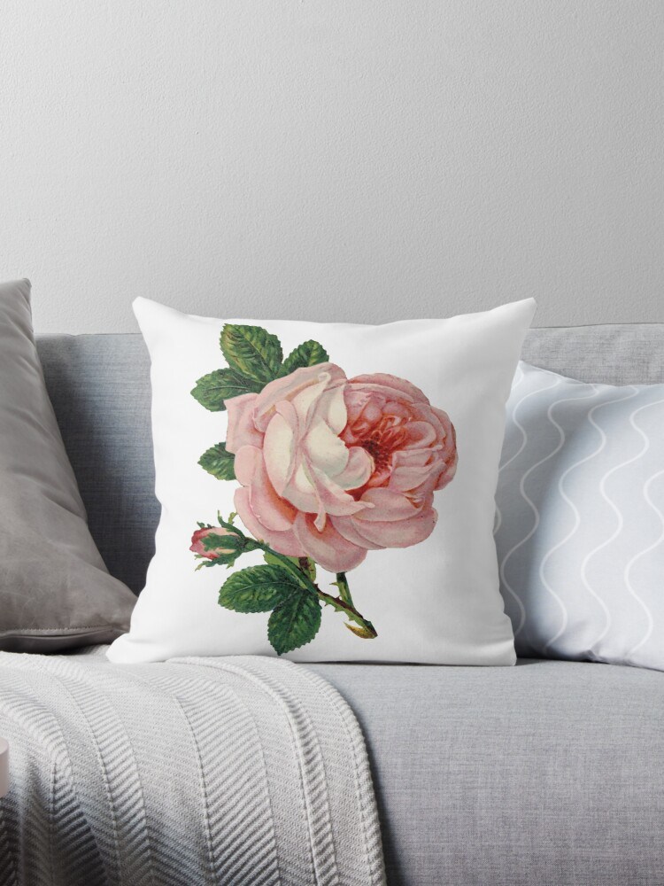 Vintage roses 2. by Alexandra Dahl
