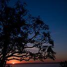 Sunset by Billy Lucero