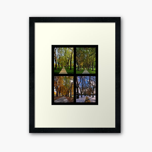 The Four Seasons at Colorado State University's Oval Framed Art Print