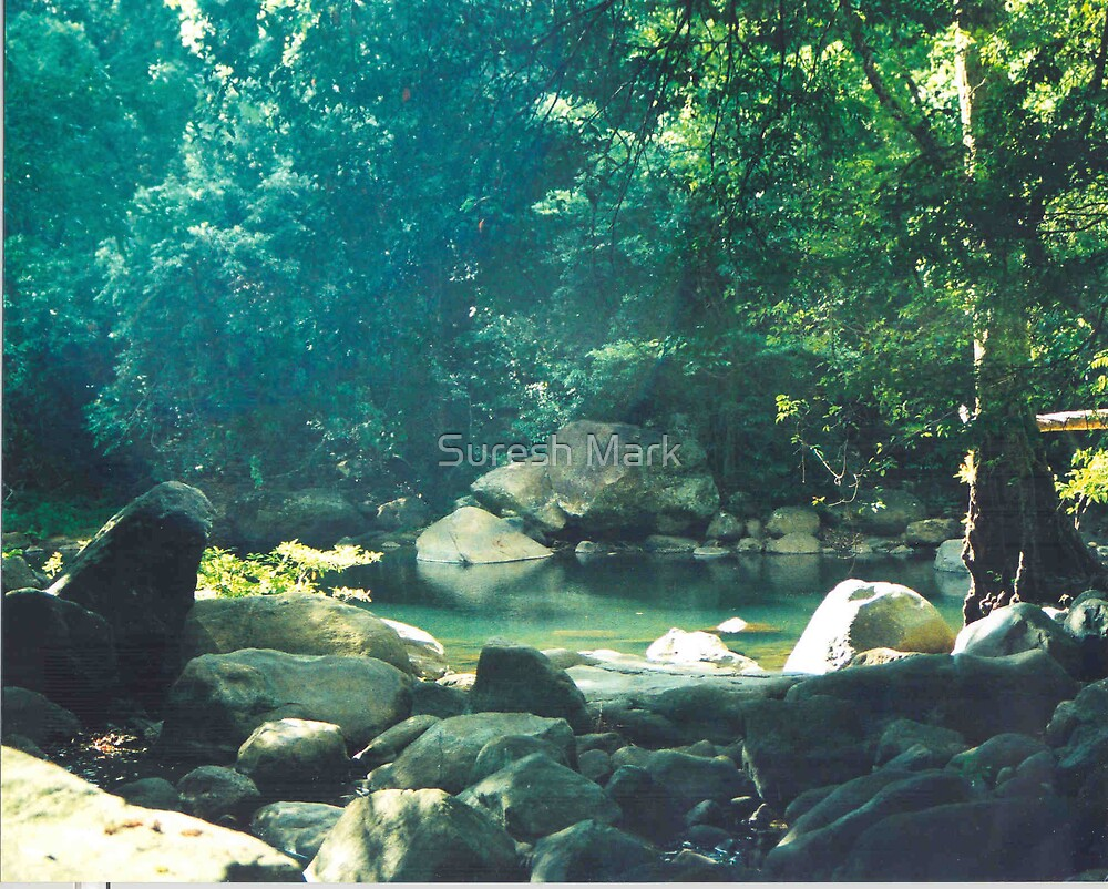 Nature - Peacefull (Mee moore)  by Suresh Mark