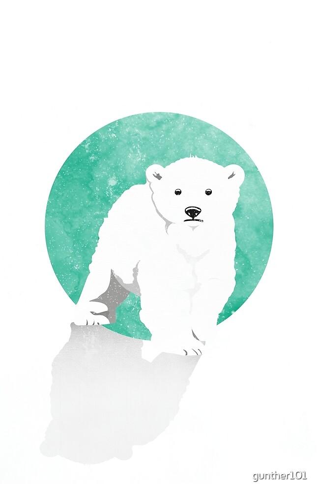 Snow Bear by gunther101