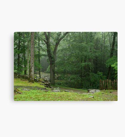 Smoky Mountain Rain Canvas Print