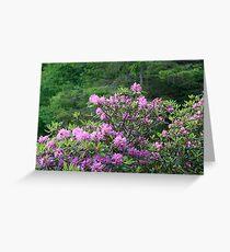 Catawba Rhododendron Greeting Card