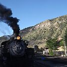 Classic Locomotive, Durango, Colorado  by lenspiro