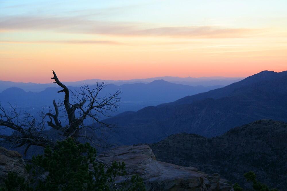 Desert Sunset by noffi