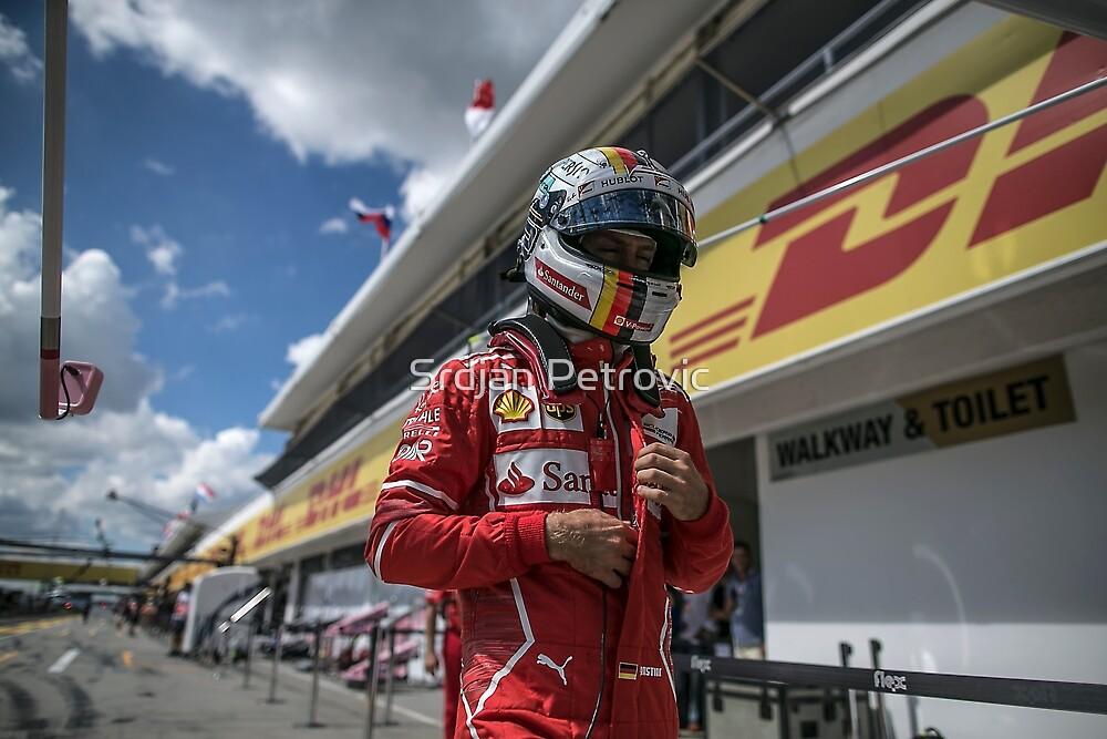 Formula 1 Champion by Srdjan Petrovic