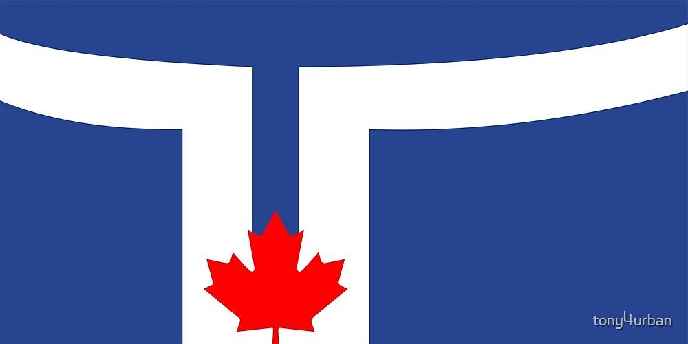 Toronto city flag by tony4urban