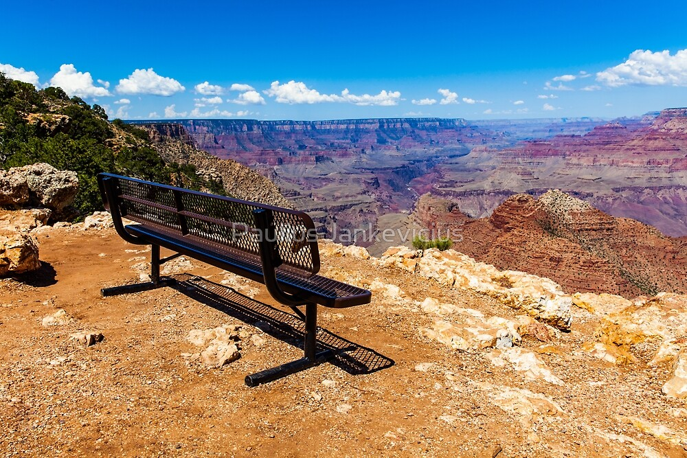 Grand Canyon Bench by Paulius Jankevicius