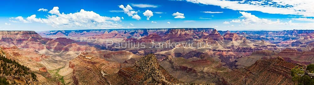 Grand Canyon Panorama by Paulius Jankevicius