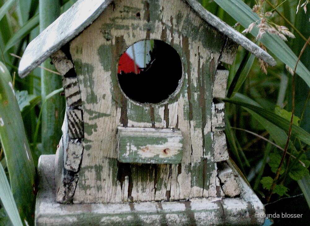 bird  house by melynda blosser