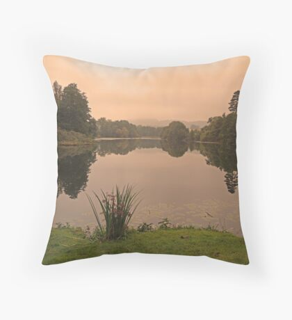 Peach Sky at Great Witley Throw Pillow