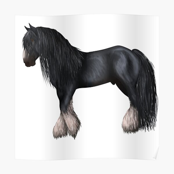 Black shire horse Poster