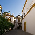 Quintessential Spain - Andalusian Architecture in White and Yellow by Georgia Mizuleva