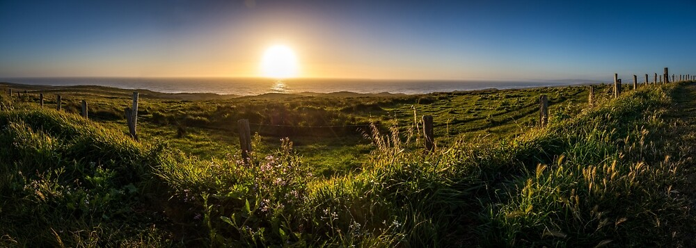 Point Reyes Coast by EthanQuin