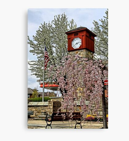 Time For Spring Canvas Print