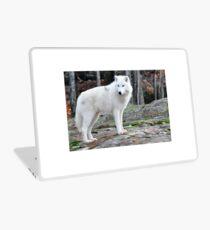Arctic Wolf - Québèc, Canada Laptop Skin