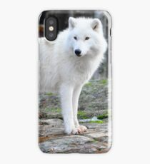 Arctic Wolf - Québèc, Canada iPhone Case