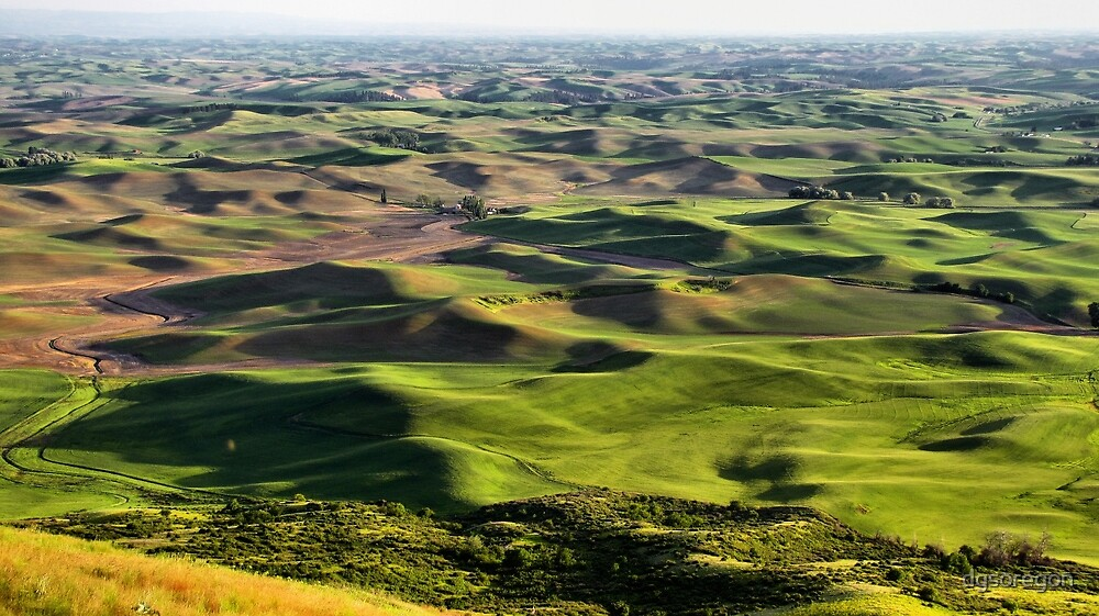 Evening shadows on the Palouse by Donald Siebel