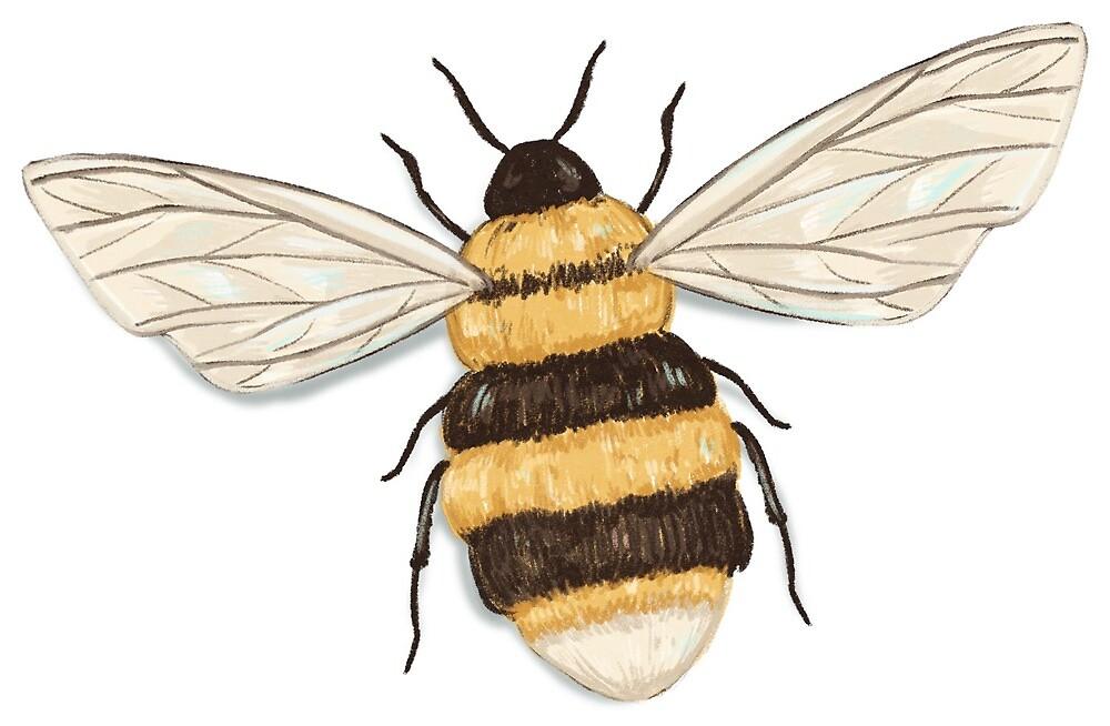 Bee Sticker by Ashley Butera