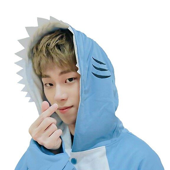 Youjin Shark Sticker by ashtana